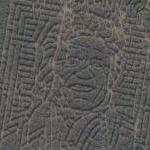 Johnny Cash crop maze (Google Maps)