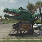 Alligator Head (StreetView)