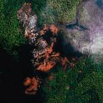 Amazon forest on fire (Google Maps)