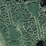 """Cornstalk 2006!"" Preston Farms Cornfield Maze (Google Maps)"