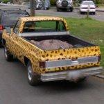 Leopard spotted Chevy pickup truck