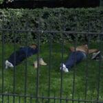 Sleepy men (StreetView)