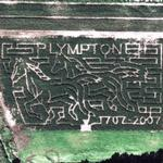 Plympton Maze