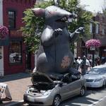 Giant inflatable rat