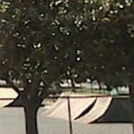Rengstorff Park Skate Park