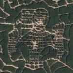 Spiderman corn maze (Google Maps)