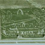 Cardinals World Champs Corn Maze