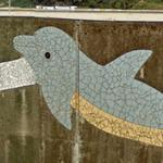 Dolphin mural (StreetView)