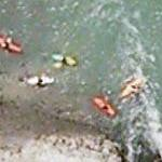 Kayakers riding whitewater drain (Google Maps)