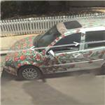 Rose covered car (StreetView)