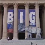 'Big Exhibit' at the National Archives (StreetView)