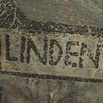 'Linden'