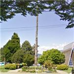 Totem pole (StreetView)