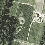 """The Babe"" Corn Maze (Google Maps)"