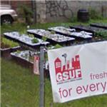 """Garden State Urban Farms"" community garden (StreetView)"