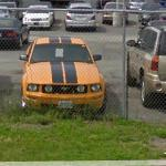 Ford Mustang (StreetView)
