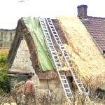 Thatching the Roof