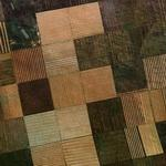Patchwork field (Google Maps)