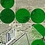 Irrigation Circles near Barstow (Google Maps)