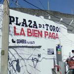 """Plaza de Toros """"La Bien Paga"""" (StreetView)"""