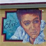 'Elvis' by Michele Loughery