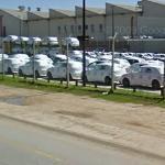 New Volkwagen Polos