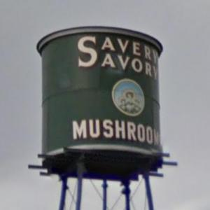 Giant Mushroom Can (StreetView)