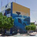 Wyland Whale Mural - 'Baja Tranquility'