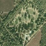 German War Cemetery Cannock Chase (Google Maps)