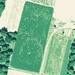 """The Babe"" Corn Maze (Yahoo Maps)"