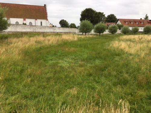 The location of the outter moat. Its traces are clearly visible.