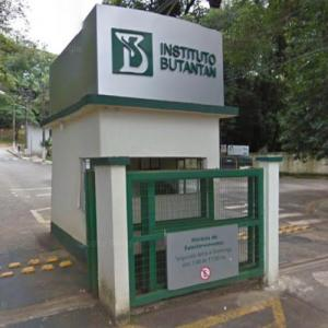 Instituto Butantan (StreetView)