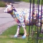 Colourful cow (StreetView)
