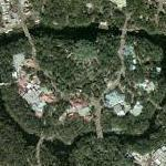 Disney World - Animal Kingdom (Google Maps)