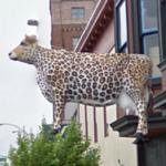 Leopard Cow (StreetView)