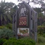Lowry Park Zoo (StreetView)