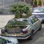 Kensington Market's Garden Car (StreetView)