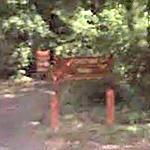 Foxstone Park Signal Site