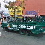 Bay Quackers