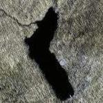 McMillan Reservoir (Google Maps)