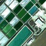 A. E. Wood Fish Hatchery (Google Maps)