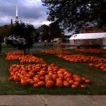 Pumpkins for sale (StreetView)