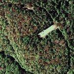 Sassafras Mountain (Google Maps)