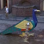 Peacock slide (StreetView)