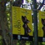 Baltasar Lobo exhibit (StreetView)