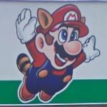 Raccoon Mario (StreetView)
