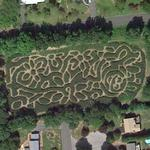 Plasko's Farm Corn Maze (Google Maps)