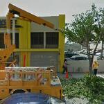 Tree pruning (StreetView)