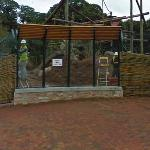 Oh my God! People in Cage? :D (StreetView)