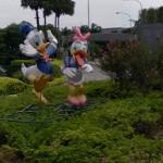 Donald & Daisy Duck (StreetView)